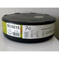 COPPIA  DISCHI FRENO ANT. PASSAT (3B2) 2.8 V6 142KW  CC 2771 FREMAX BD 5306
